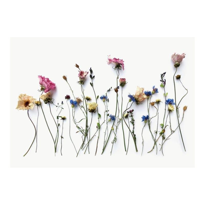 Flowerland